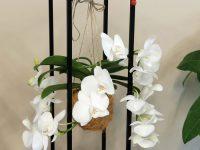 Aşka Dair Anlamlı Sevgiliye Çiçek Buketleri