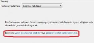 Mozilla Firefox Girdiğim Siteleri Silmek